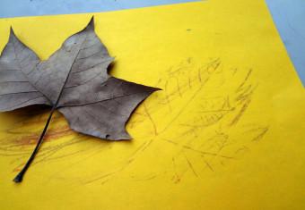 bladeren tekenen
