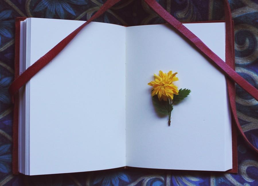 bloemen drogen boek