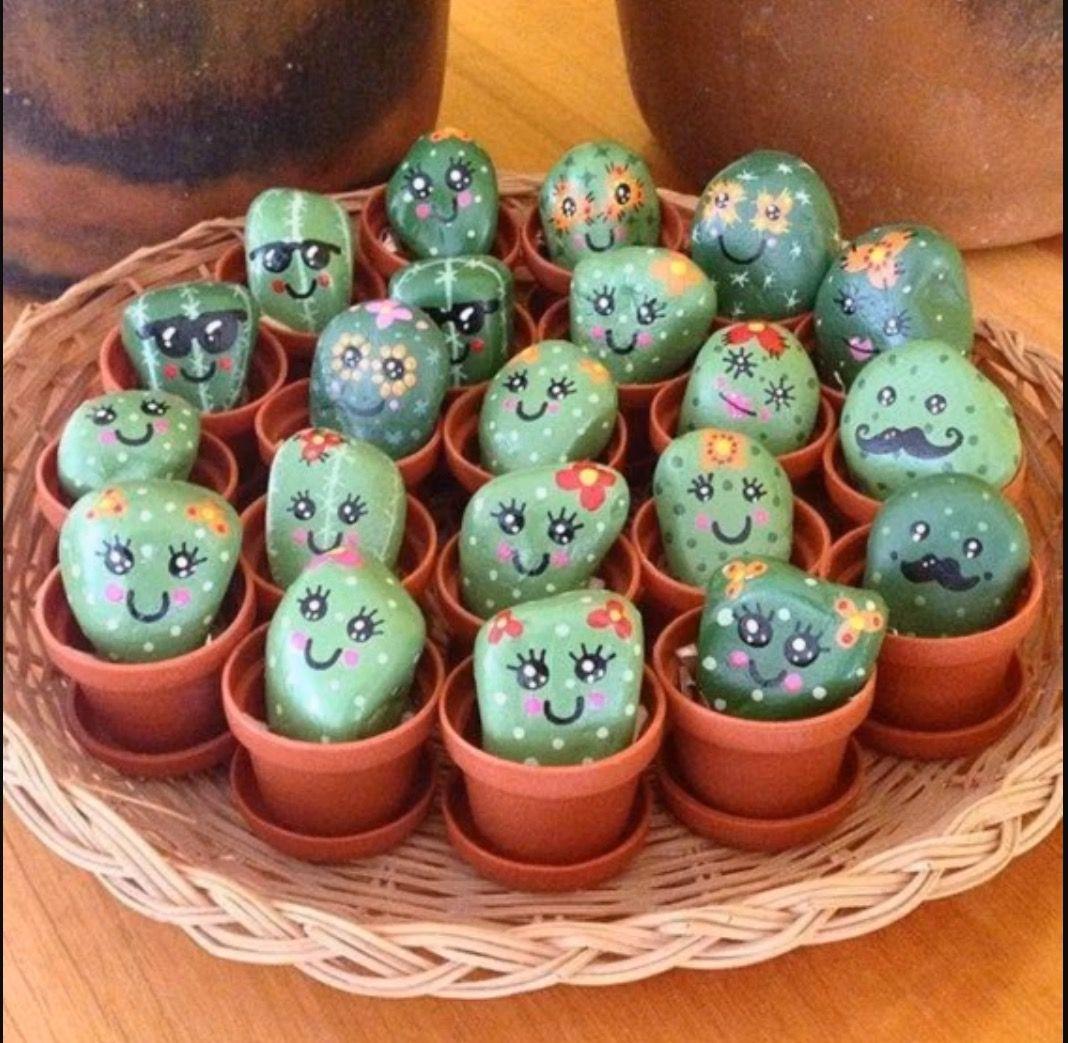 cactus happy stones